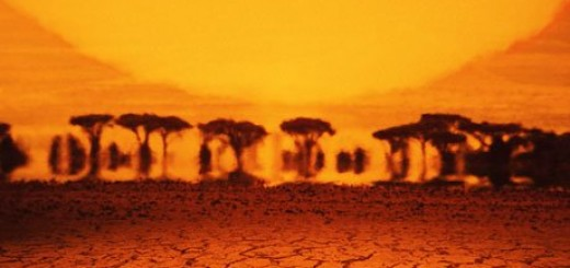mirage-desert-007